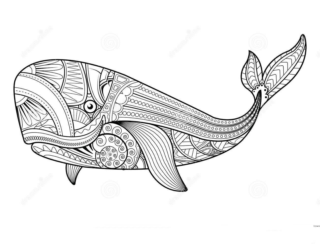 Mandala Whale Coloring Page - Free Printable Coloring ...
